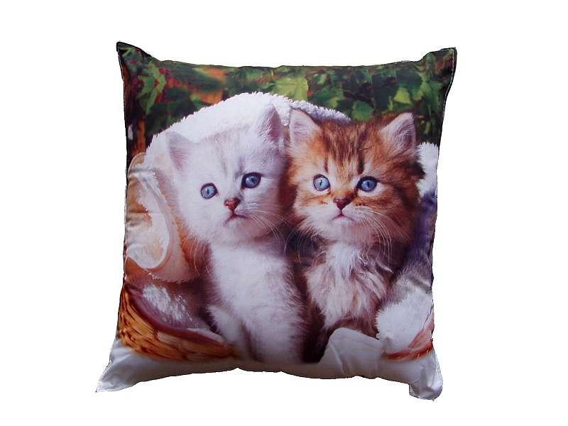 Fotopolštářek - Bílé a hnědé kotě Dadka