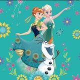 Dětský polštářek Frozen 2016