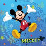 Dětský polštářek Mickey 2016