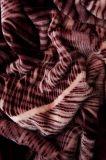 Povlečení z mikroflanelu se vzorem peříček na mahagonovém podkladu Svitap