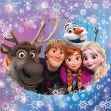 Povlak na polštářek Frozen family