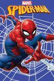 Dětská fleecová deka Spiderman web