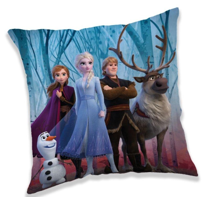 Povlak na polštářek Frozen 2 v lese Jerry Fabrics